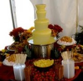 Chocolate Fountain #77